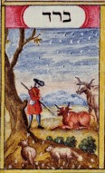 Plague of Hail, Haggadah by Judah Pinchas, 1747 Germany